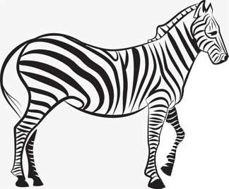 abarrotes_zebra abarrotes_zebra abarrotes_zebra abarrotes_zebra